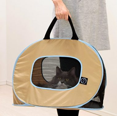 Cat Training Tips – How To Get Your Cat to Love Their Carriers…