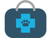 Spay and Neuter Surgery