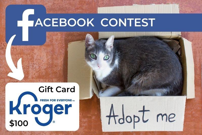 June 2021 Facebook Contest