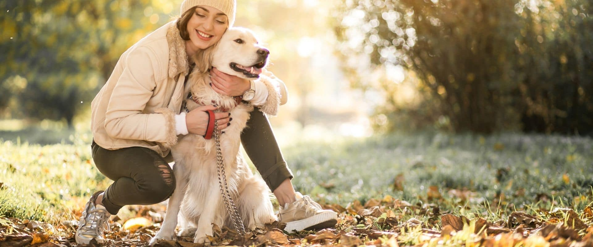 White Golden Retriever in a field  with a lady in a sock hat