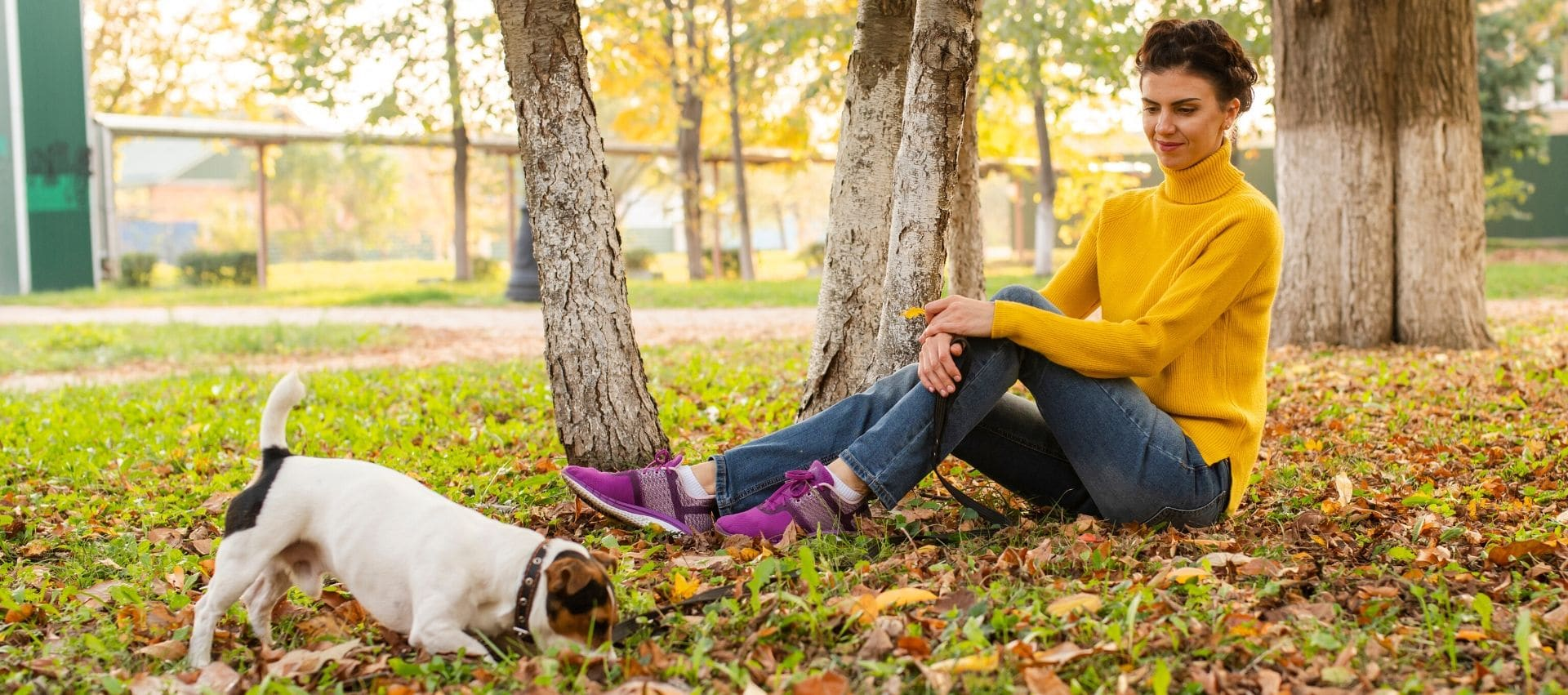 White dog playing in park with lady in gold turtleneck
