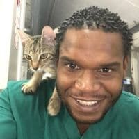 Man with a green shirt and a furry kitten on his shoulder